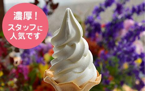 北海道ソフトクリームイメージ
